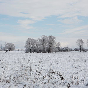 White winter in Bulgaria