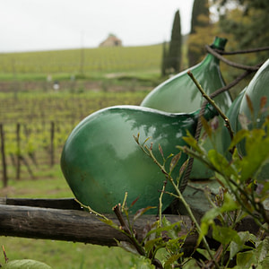 The wines of Tuscany