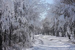 Snow scene at Shipka